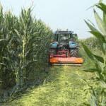 Under 35 e agricoltura, Italia al primo posto per