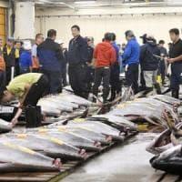 Tokyo, ultima asta nello storico mercato del pesce Tsukiji