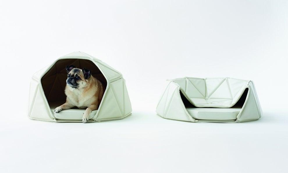 Pet-tecture, il design al servizio degli animali domestici