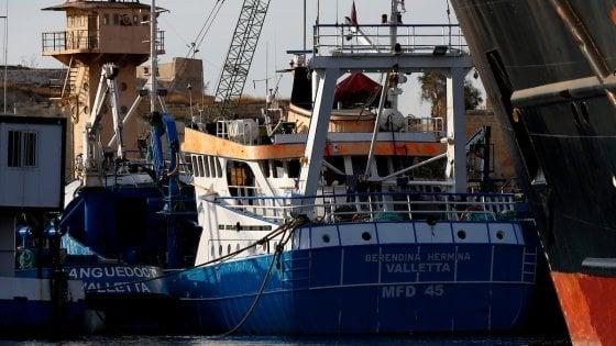 Omicidio Daphne Caruana Galizia: quel vascello dei trafficanti nella secca al largo di Valletta