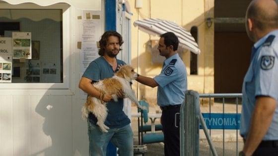 Un cane nella Cipro divisa fra greci e turchi: con 'Torna a casa Jimi' la commedia si fa politica