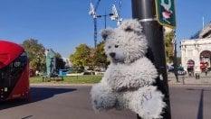 Un orsetto al semaforo: ecco cosa succede al peluche se l'aria è inquinata