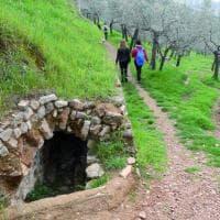 Tra Bologna e la Puglia, i luoghi del trekking urbano