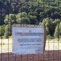Discarica di Bussi, la Cassazione conferma l'avvelenamento