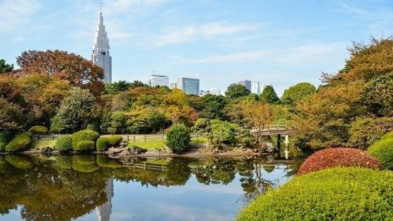 Il guardiano dei giardini di Tokyo ha paura dei turisti: entrata gratis per tutti