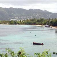 Martinica, fiori e colori dell'isola delle Antille Francesi