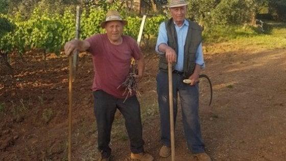 Quei due giovanotti ottantenni custodi del Ciliegiolo