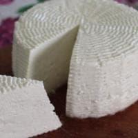 Il giro d'Italia dei formaggi (di capra): bombe di gusto da imparare a conoscere