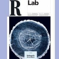 RLab: laser e raggi X, ecco come salvare i boschi