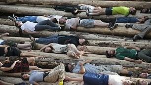 I paladini della foresta polacca si stendono sui tronchi