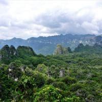 Borneo, i primi ''graffiti'' in una grotta