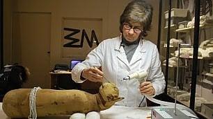 La donna che sussurra alle mummie di tori, cani e gatti