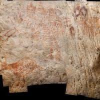 Nelle grotte del Borneo le prime pitture figurative