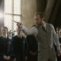 'Animali fantastici 2' ritorno a Hogwarts con il giovane Silente e l'albino dall'occhio bianco