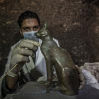 Gatti, scarabei e altri animali: i tesori della necropoli di Saqqara