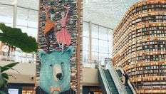 14mila libri come albero di Natale: la biblioteca diventa un'opera d'arte