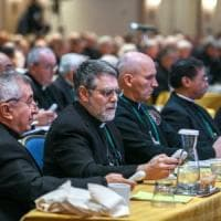 L'irritazione dei vescovi americani contro l'ex cardinale McCarrick: