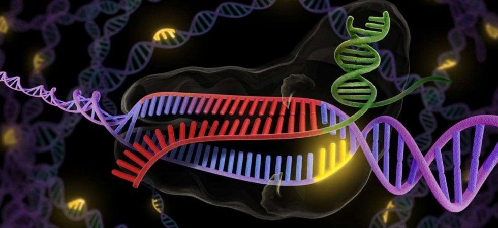 CAR - T, parte in Italia la prima terapia genica contro un tumore del cervello nei bambini