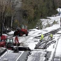 Usa, neve su New York e sulla costa orientale: 8 morti