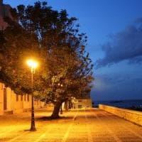 Clima più mite e luci artificiali alterano il riposo degli alberi