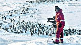 Pinguini intrappolati, la troupe Bbc si ribella e li salva