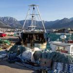 Pesce, Italia leader in Europa per i consumi