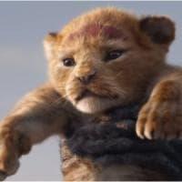 'Il re leone', Simba e Mufasa