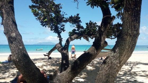 Seychelles, l'arcipelago-eden che non dimentica di essere parte della Terra