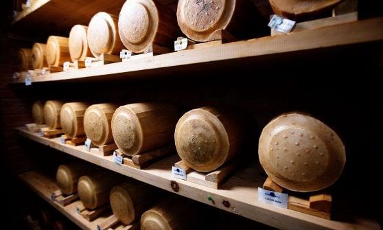 """Dal vino al culatello"""": i prodotti della Comunità di San Patrignano sono """"buoni due volte"""""""