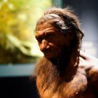 Tutte le volte che abbiamo incontrato Neanderthal: è scritto nel nostro Dna