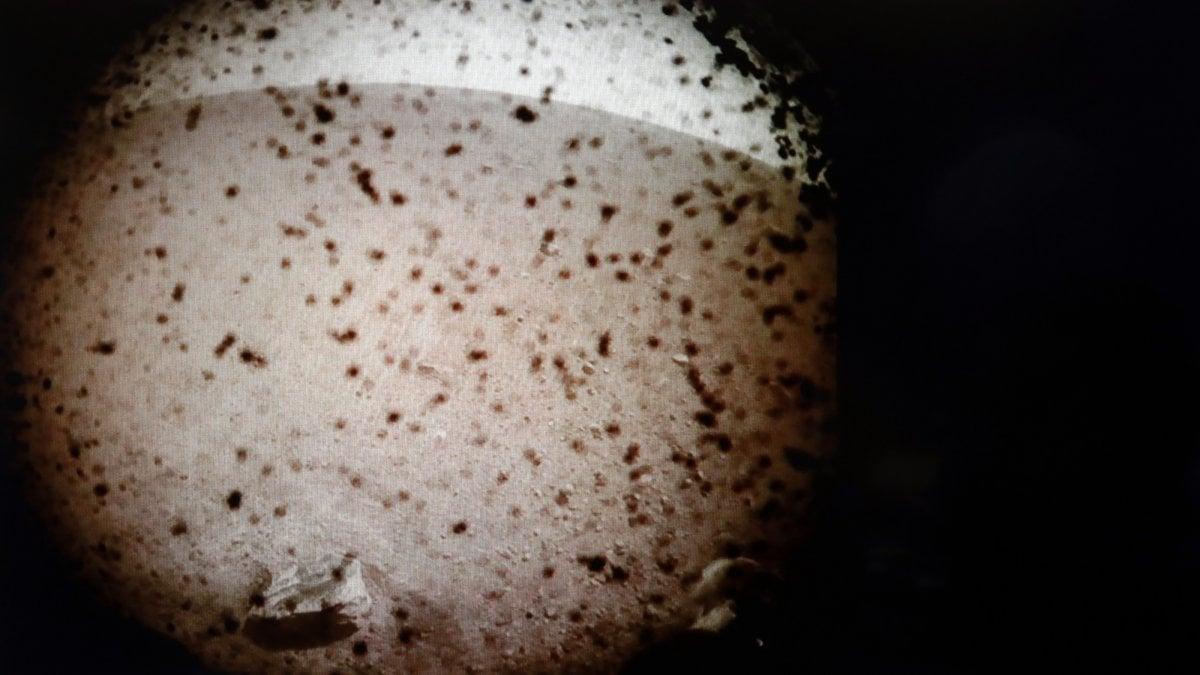Insight si è posata su Marte. Ammartaggio perfetto, la Nasa esulta