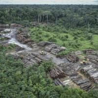 Amazzonia, un milione di campi di calcio perduti in un anno