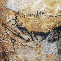 Bisonti, volpi e anatre: lo Zodiaco della preistoria
