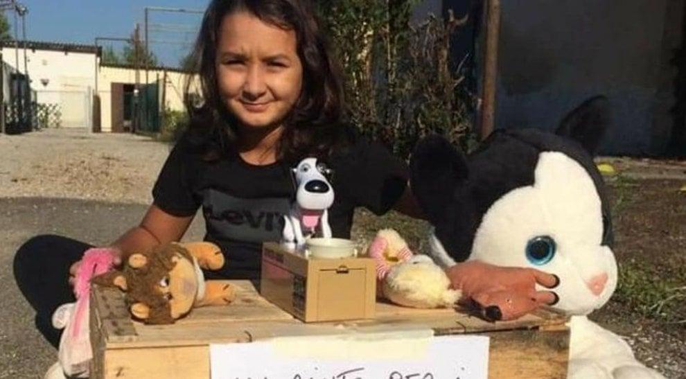 Francesca, volontaria onoraria che vende i suoi peluche per aiutare i cani dell'Enpa