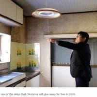 Giappone, ecco le case abbandonate in vendita a Okutama
