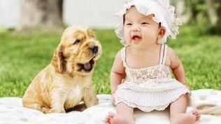 """""""Guarda quel bimbo, me lo mangerei di baci"""": l'aggressività tenera ora ha una spiegazione"""