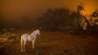 Cambiamenti climatici, la grande sfida: su Repubblica TVil docufilm National Geographic