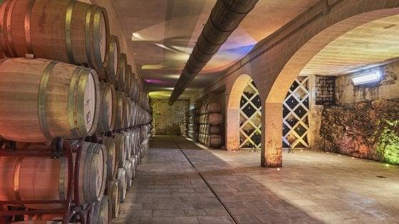 Tra Moscatello e Primitivo, uno Château di Borgogna nel cuore della Puglia