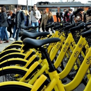 Bike sharing, Ofo a un passo dalla bancarotta. Ft: Chiusa la divisione internazionale