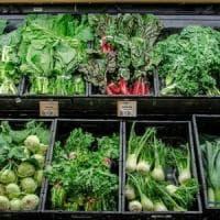 Il maltempo gela i raccolti: prezzi record per le verdure