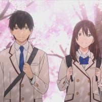 L'amicizia, la malattia e un diario segreto: la storia che ha incantato i teenager giapponesi