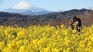 Giappone: 1000 yen per uscire