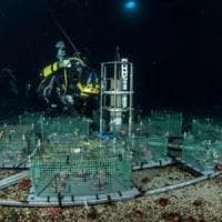 Antartide: un laboratorio sotto ghiacci per studiare i cambi di clima