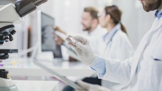 Creati per la prima volta vasi sanguigni umani