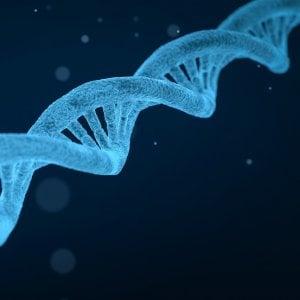 Codice genetico o codice postale: quale conta di più per non ammalarsi