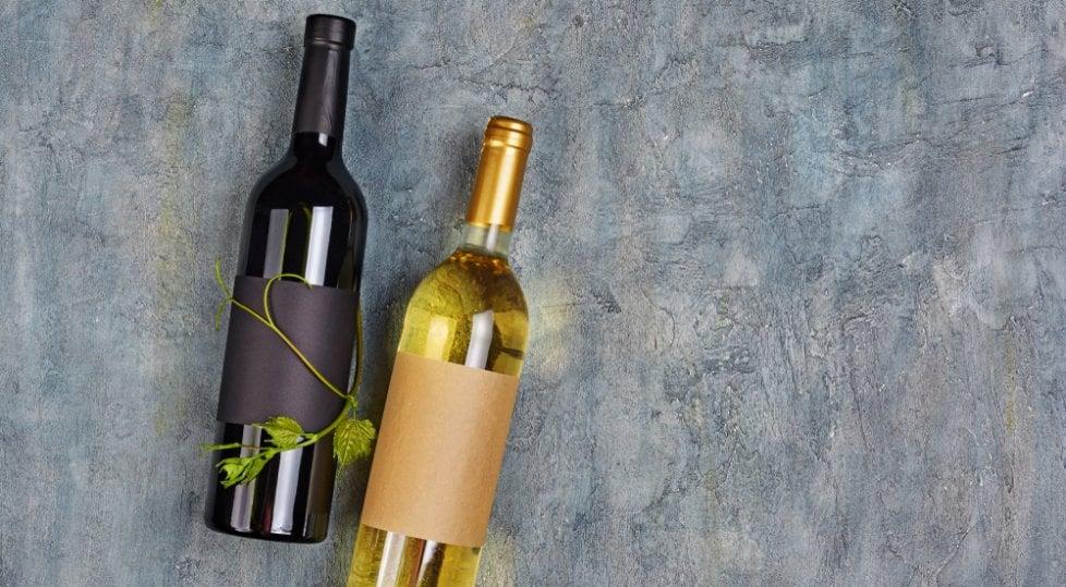 Nel Cilento artigiano  il vino è un micromondo  di storie, vigne e pensieri
