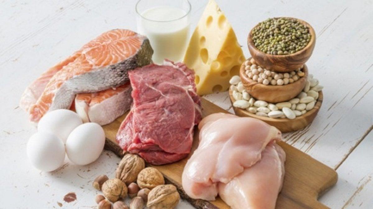 dieta solo a base di proteine