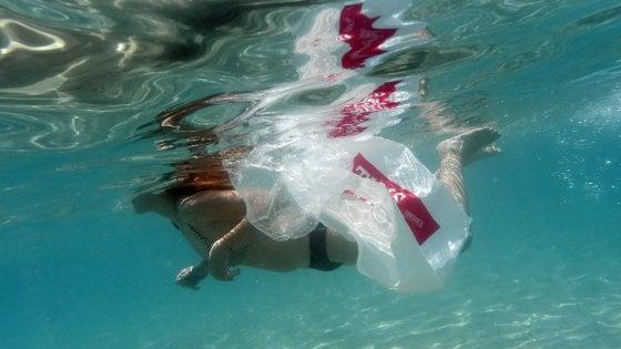 """Stop all'inquinamento da plastica, il Wwf: """"Serve accordo globale dei capi di Stato"""""""