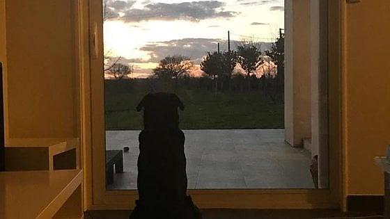 I tramonti più belli hanno bisogno di cieli nuvolosi. (Paulo Coelho)   202206233-8753a3ec-58a4-4e06-b817-d267f128412a