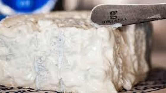 Ritirati lotti di gorgonzola dolce Dop: rischio conteminazione da batterio